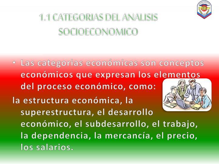 1 1 categorias del analisis socioeconomico