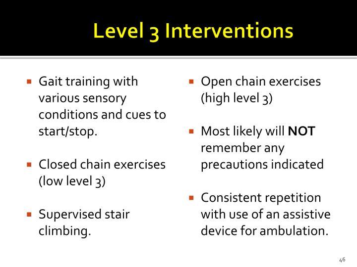 Level 3 Interventions