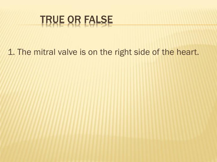 1. The mitral valve is on the right side of the heart.