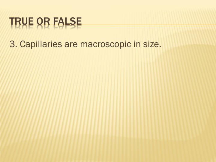 3. Capillaries are macroscopic in size.