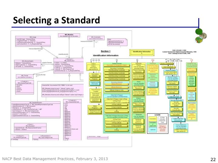 Selecting a Standard