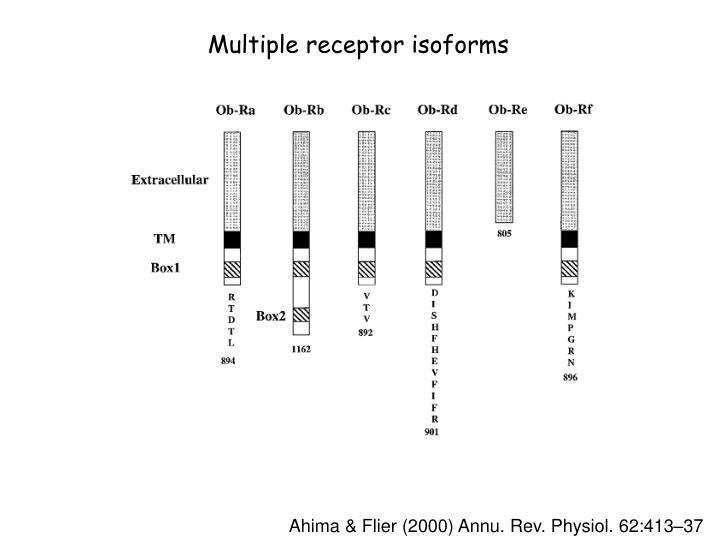 Multiple receptor isoforms
