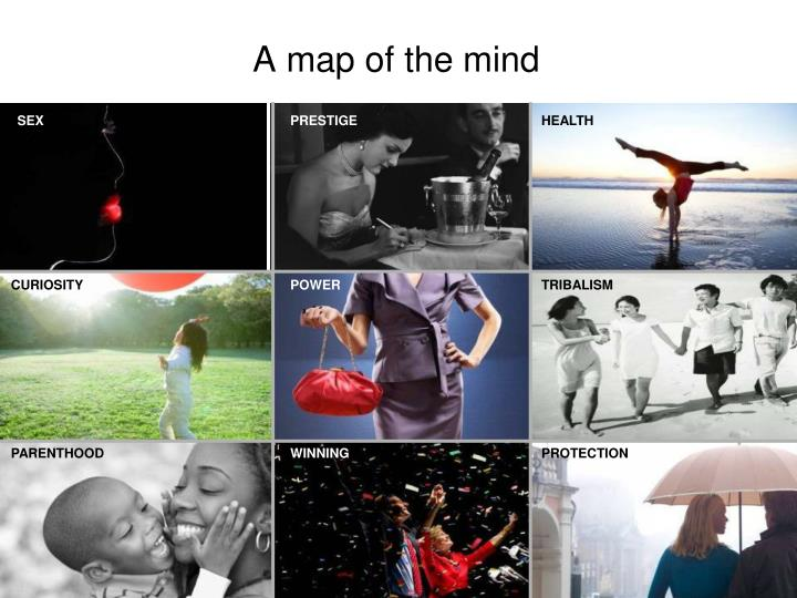 A map of the mind