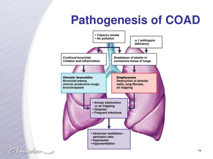 Pathogenesis of COAD