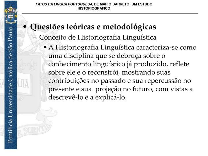 Questões teóricas e metodológicas
