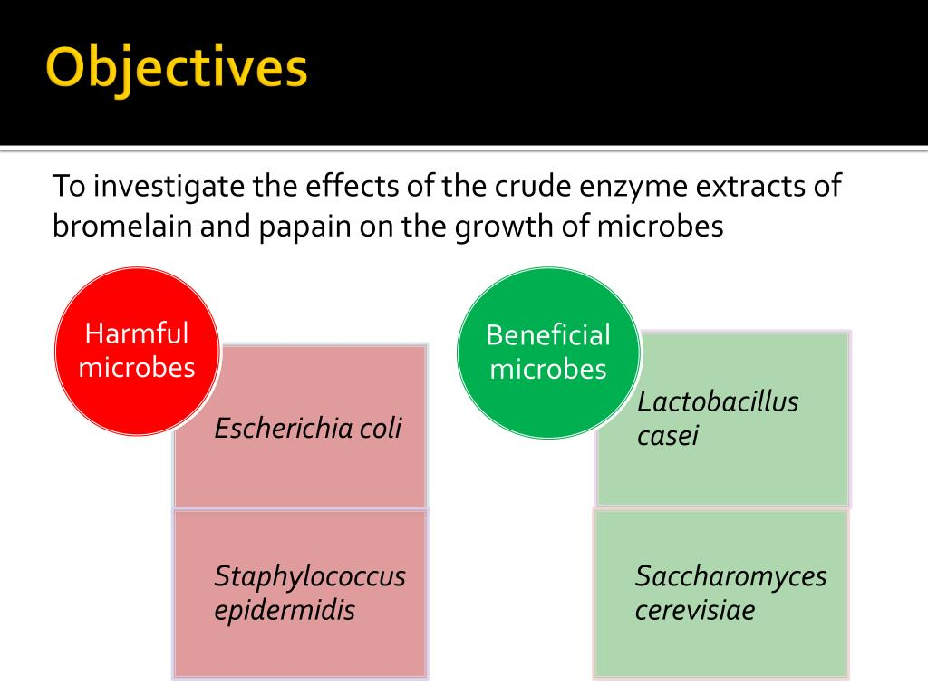PPT - Investigating the effects of Bromelain and Papain on Pathogens
