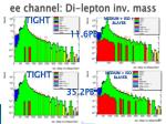 ee channel di lepton inv mass