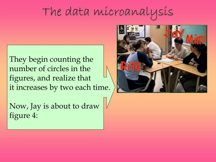 The data microanalysis