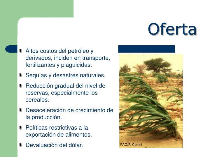 FAO/P. Cenini