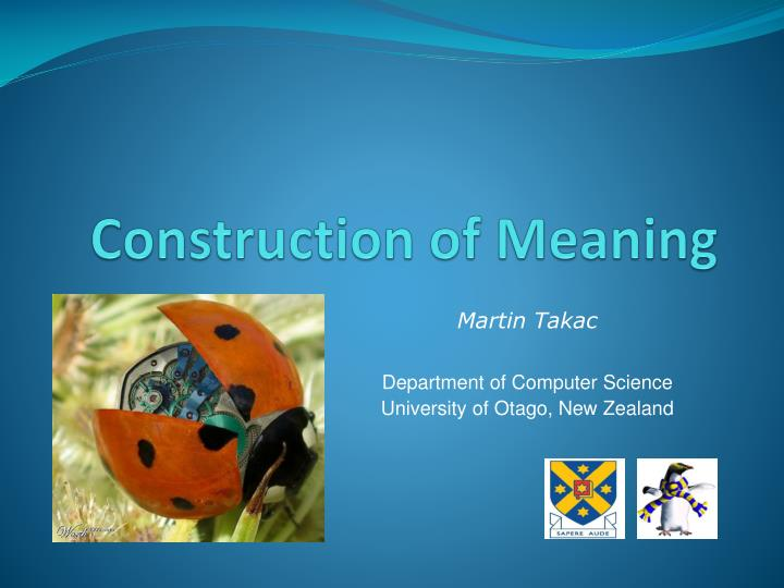 construction of meaning n.