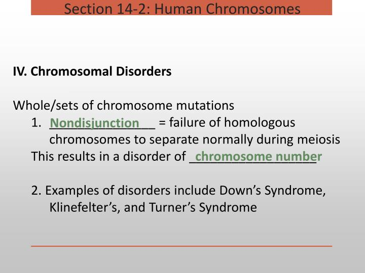 Section 14-2: Human Chromosomes