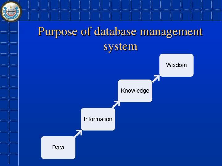 Purpose of database management system