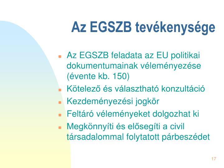Az EGSZB tevékenysége