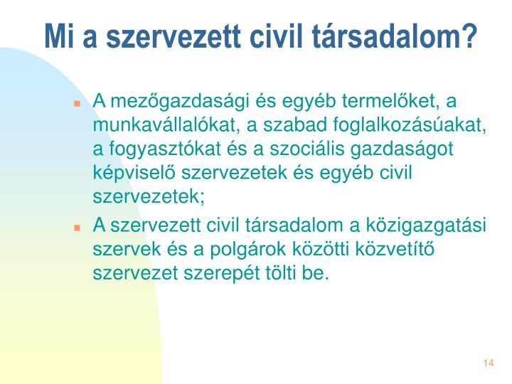 Mi a szervezett civil társadalom?