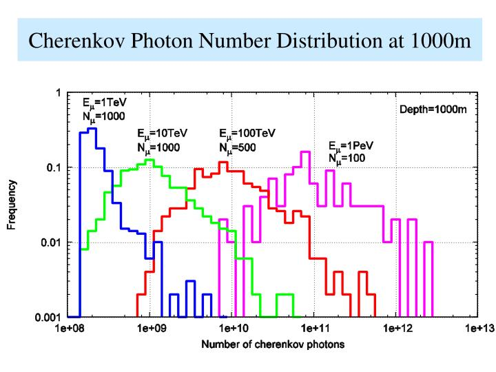 Cherenkov Photon Number Distribution at 1000m
