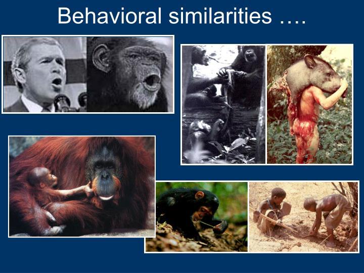 Behavioral similarities ….
