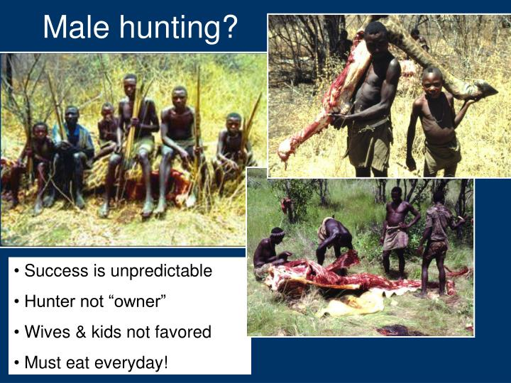 Male hunting?