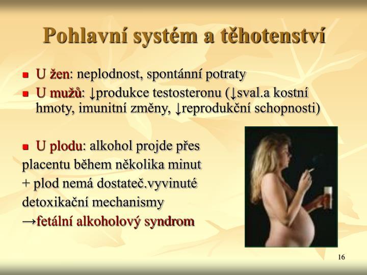 Pohlavní systém a těhotenství
