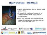 new york state dream act