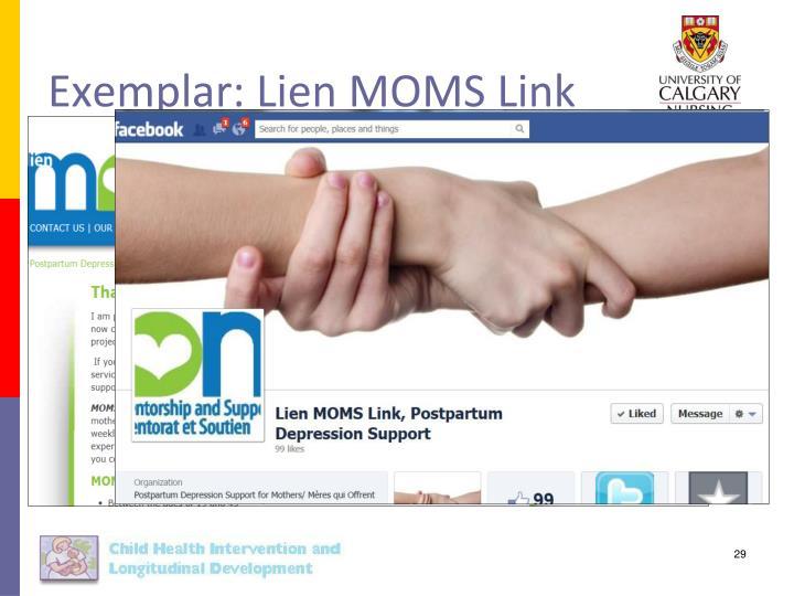 Exemplar: Lien MOMS Link
