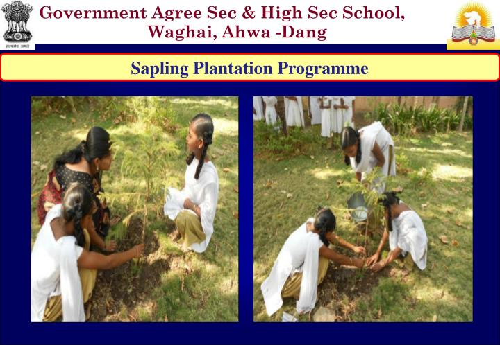 Government Agree Sec & High Sec School, Waghai, Ahwa -Dang