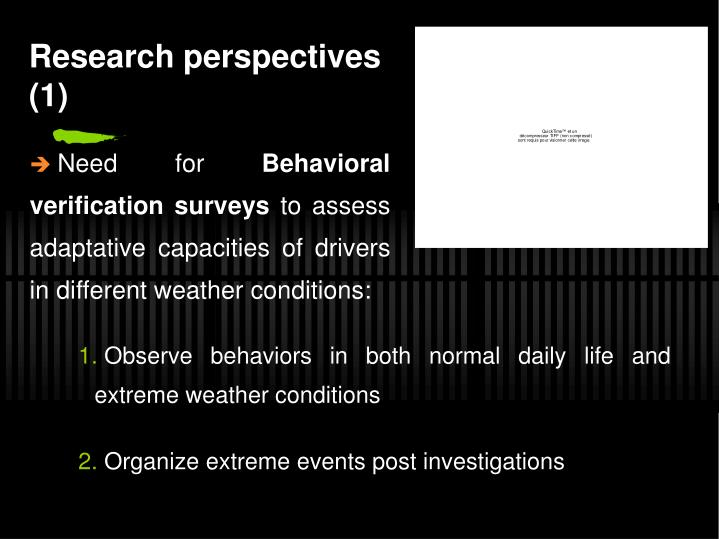 Research perspectives (1)