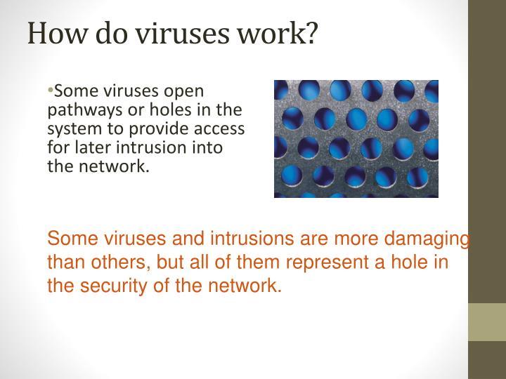 How do viruses work?