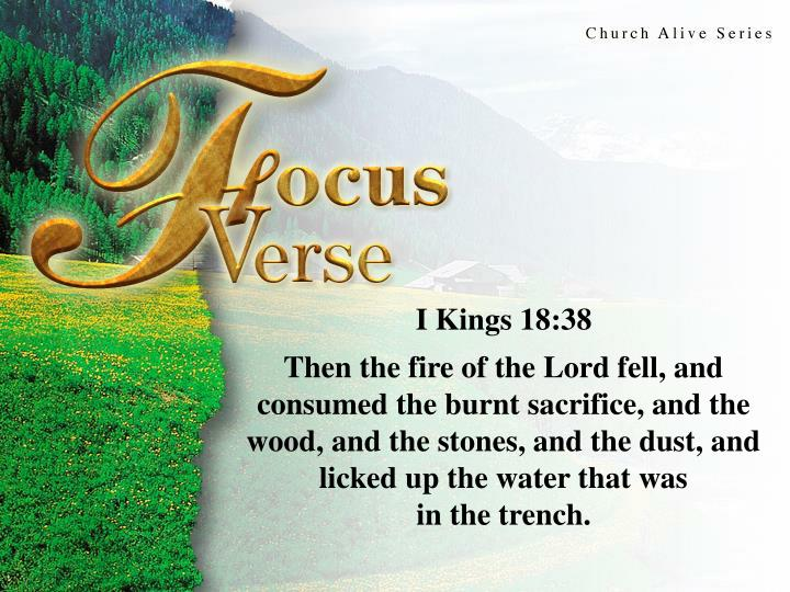 Focus Verse