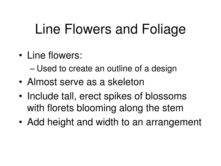 Line Flowers and Foliage