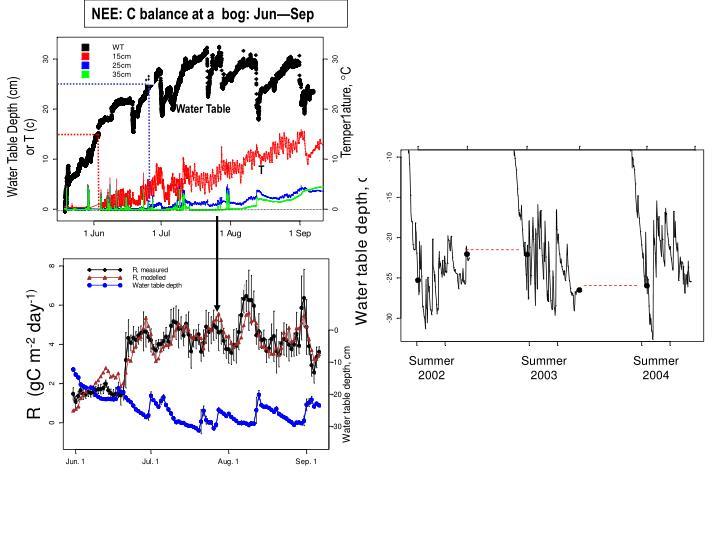 NEE: C balance at a  bog: Jun—Sep