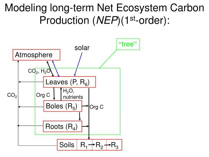 Modeling long-term Net Ecosystem Carbon Production (