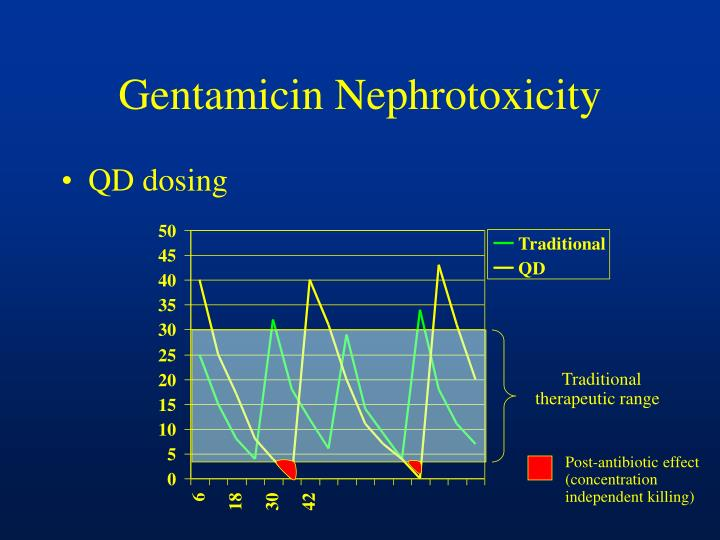 Gentamicin Nephrotoxicity