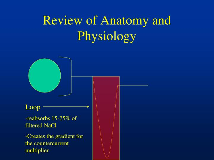 Review of Anatomy and Physiology