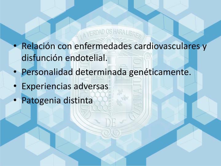 Relación con enfermedades cardiovasculares y disfunción endotelial.