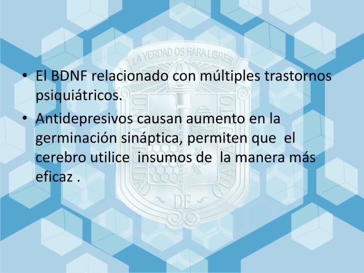 El BDNF relacionado con