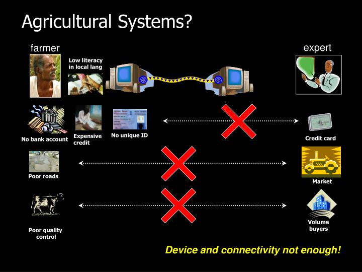 Agricultural Systems?