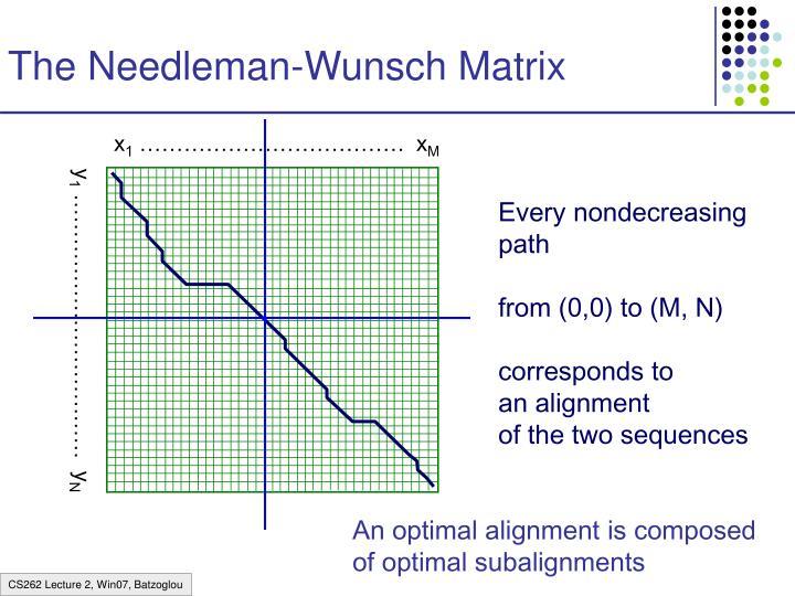The Needleman-Wunsch Matrix