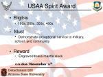 usaa spirit award