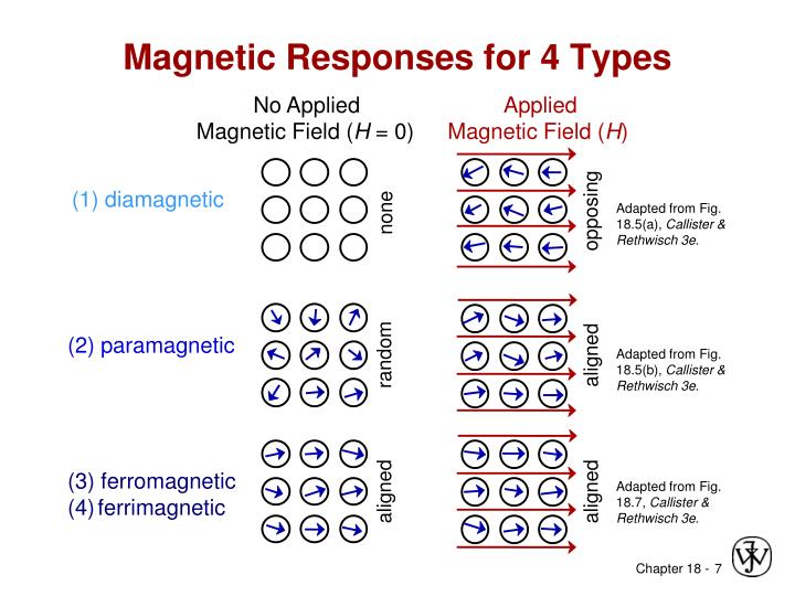 (2) paramagnetic