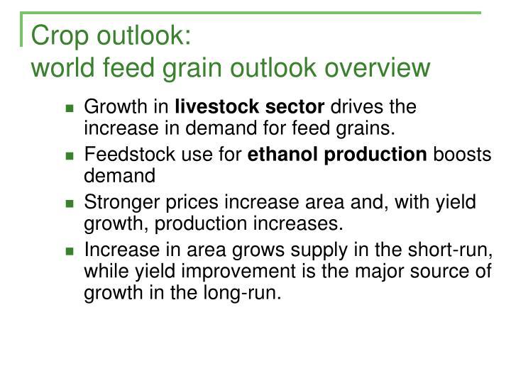 Crop outlook: