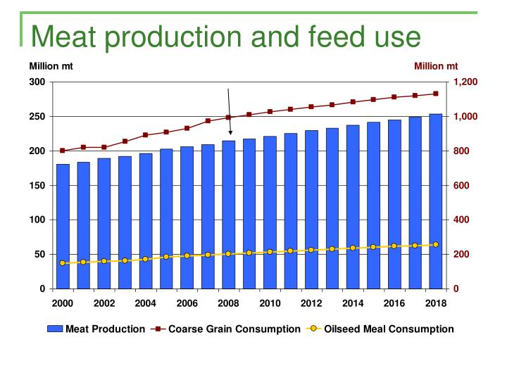 Meat production and feed use