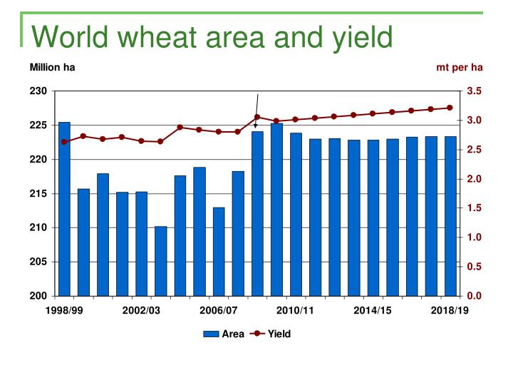 World wheat area and yield