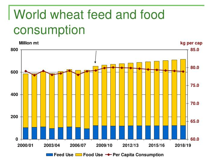 World wheat feed and food consumption