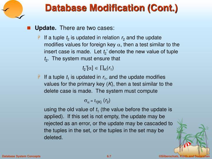 Database Modification (Cont.)