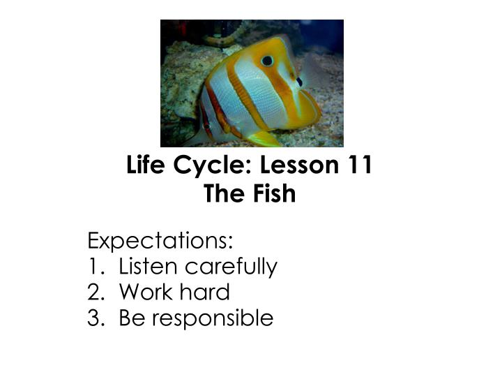 expectations 1 listen carefully 2 work hard 3 be responsible n.