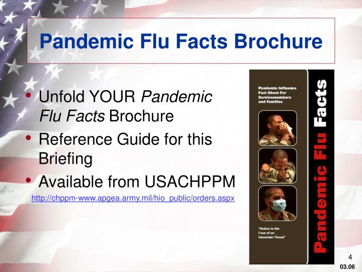 Pandemic Flu Facts Brochure