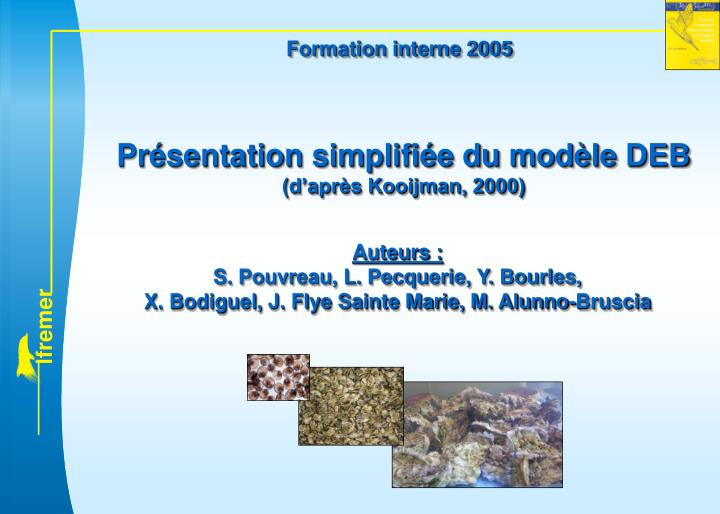 Formation interne 2005
