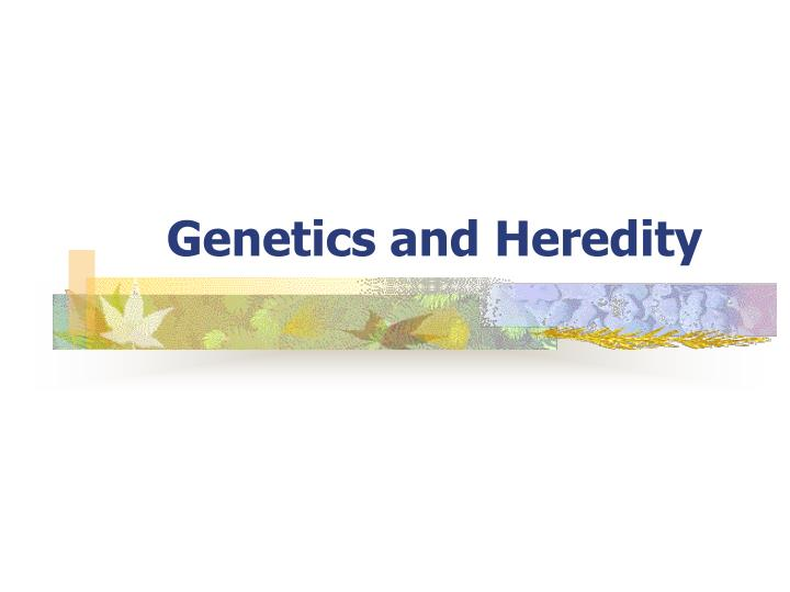 genetics and heredity n.