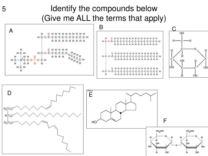 Identify the compounds below