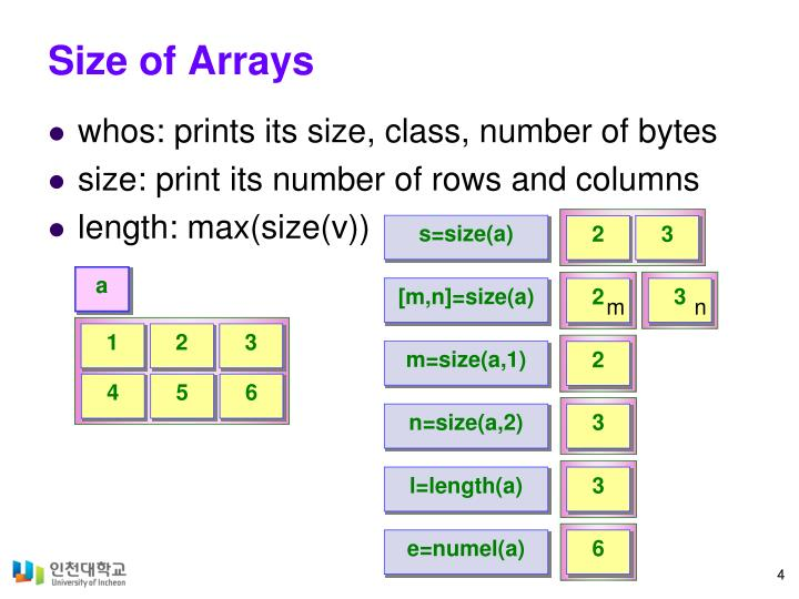 Size of Arrays